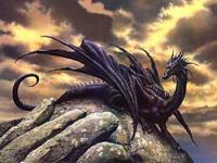 purpledragon's Avatar